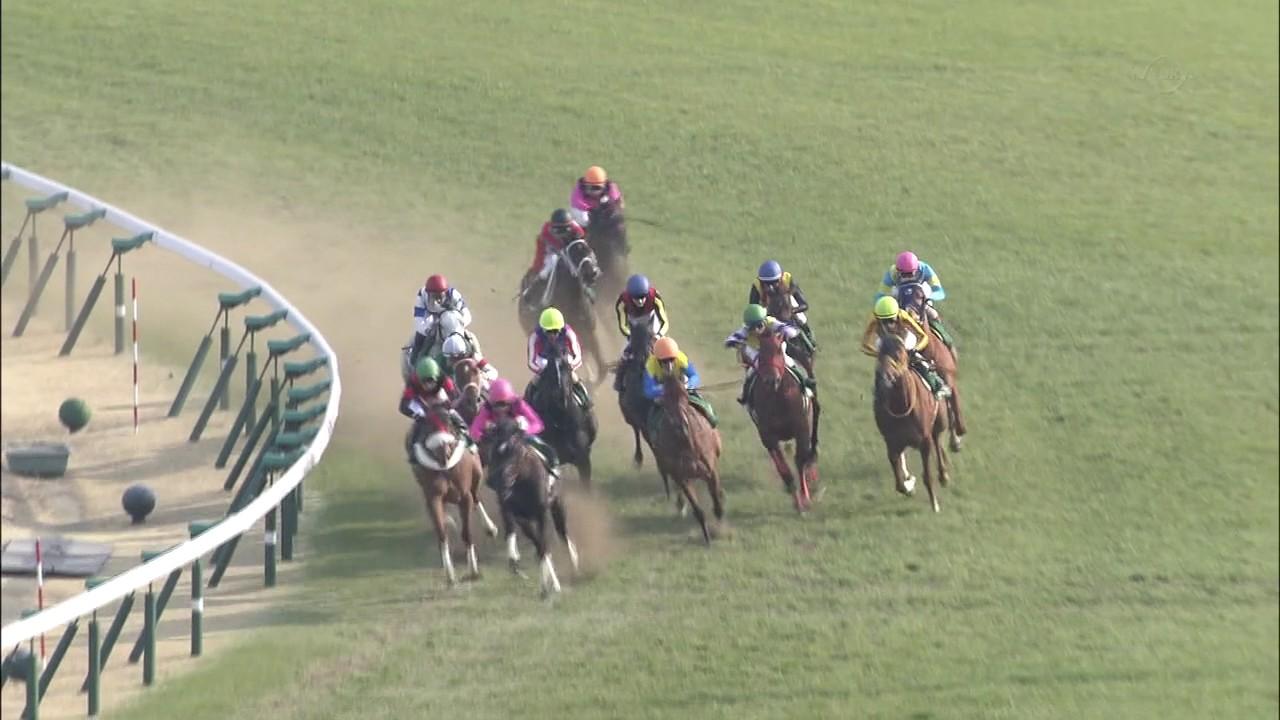 【フラワーC/結果】5馬身差の圧勝!ファンディーナ強すぎwwww